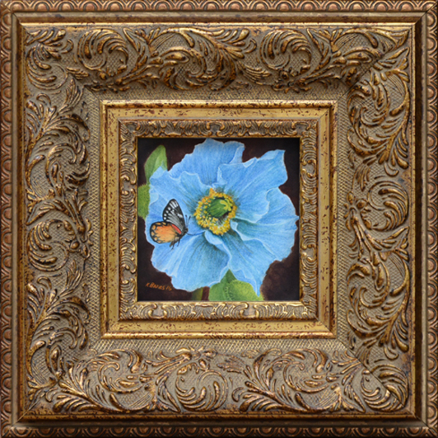 """Bates, Kathy (20th century) """"Himalayan Blue Poppy with Red Spot Jezebel Butterfly"""""""