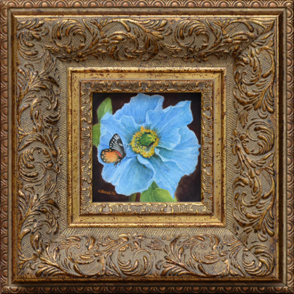 "Bates, Kathy <br> (20th century) <br>""Himalayan Blue Poppy with Red Spot Jezebel Butterfly"""