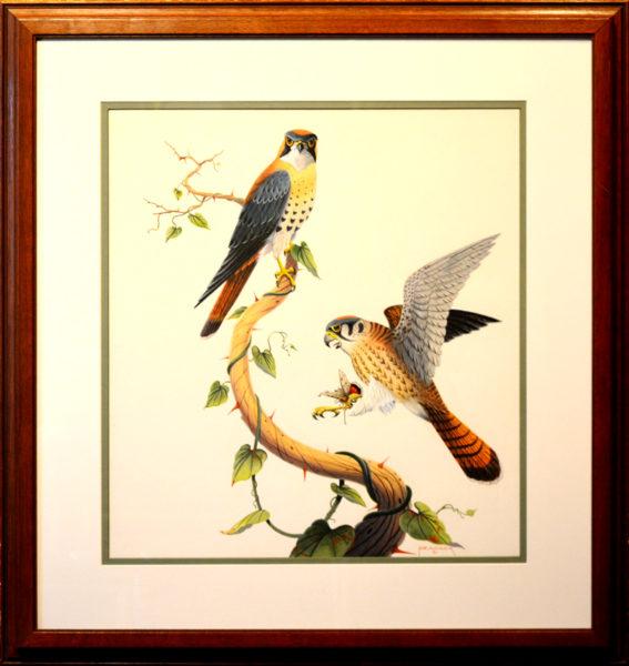 """Peacock, Claude<br>(1912-2005)<br>""""Kestrals"""""""